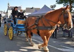 fête du cheval au Faouët