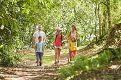 Balade en famille dans le bois de Sainte-Barbe au Faouët