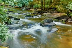 Rivière du Scorff