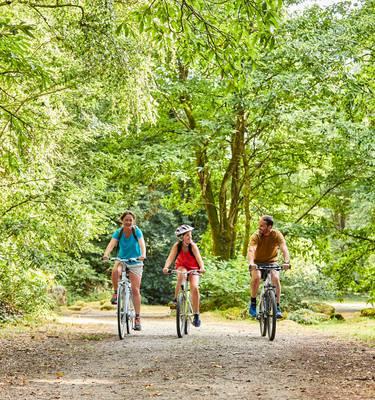 Vélo sur la voie verte © A. Lamoureux